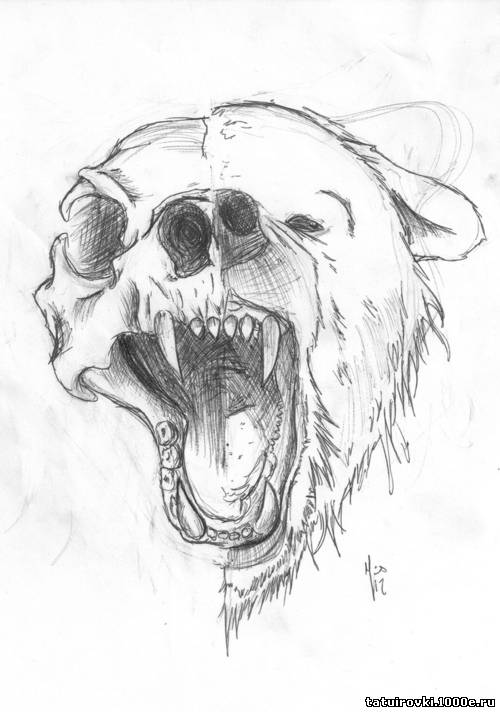 медведь рисунок татуировка